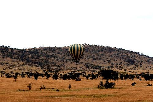 Floating above the Serengeti
